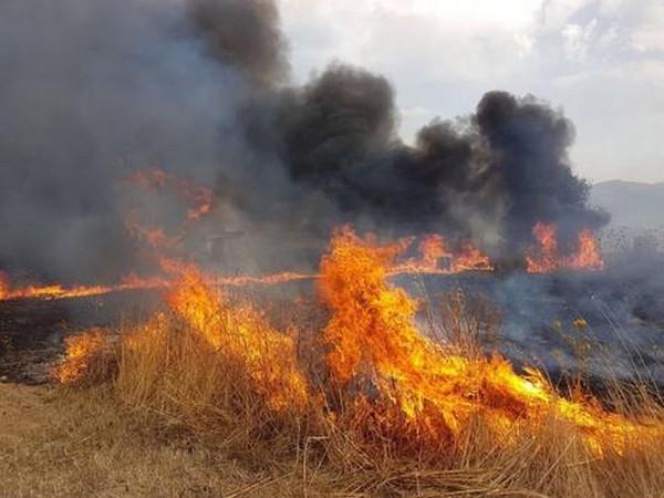 Região da Sardenha, na Itália, também foi atingida por um incêndio florestal nesta semana - Foto: ANSA