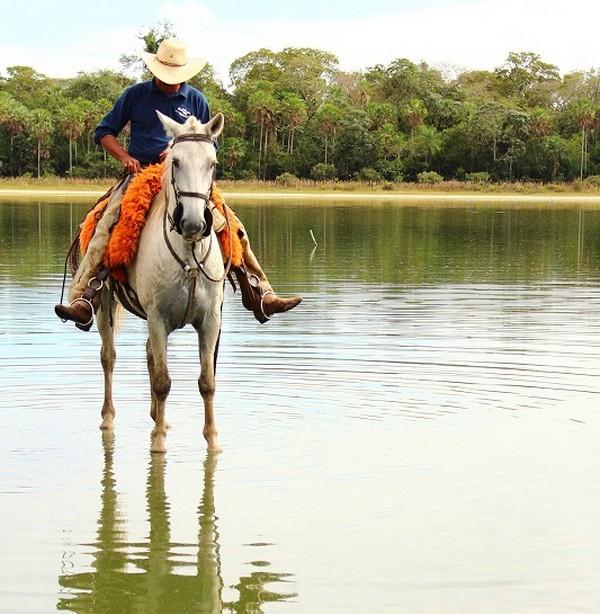 Raças naturalizadas e outras informações sobre o Pantanal são levadas pela Embrapa a evento cultural – Foto: Nicoli Dichoff
