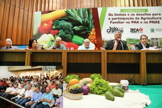 Audiência Pública foi realizada nesta sexta-feira na Assembleia Legislativa; no destaque os agricultores familiares – Foto: Victor Chileno/ALMS