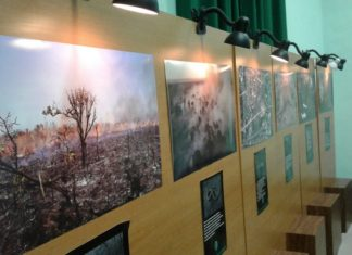 Exposição traz imagens que impactam os visitantes - Divulgação / Estação Natureza Pantanal