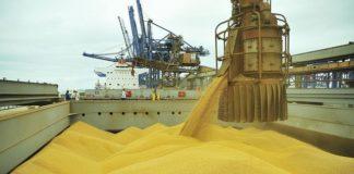 As exportações cresceram 5,7%, com destaque para os produtos da agropecuária, com +8,1% - Divulgação