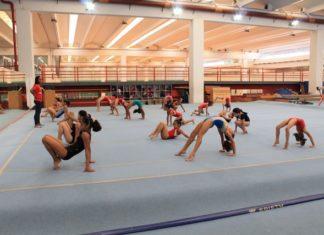 Curso visa o fortalecimento da ginástica artística douradense em nível estadual e nacional - Divulgação