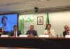 Conselheira Marisa Serrano participou nesta quinta-feira, 5, de uma Audiência Pública da Câmara dos Deputados - Assessoria