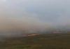 O incêndio, provocado por causas naturais, teve início na sexta-feira, 13, na região do Parque - Divulgação
