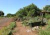 Projeto visa proteger mananciais e evitar a formação de lixões em áreas alagáveis - Foto: A. Frota/Assecom