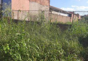 Prefeitura de Rio Brilhante começa aplicar multas em proprietários de terrenos e residências 1